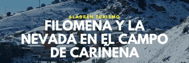 Folimena Aladren Cariñena nieve